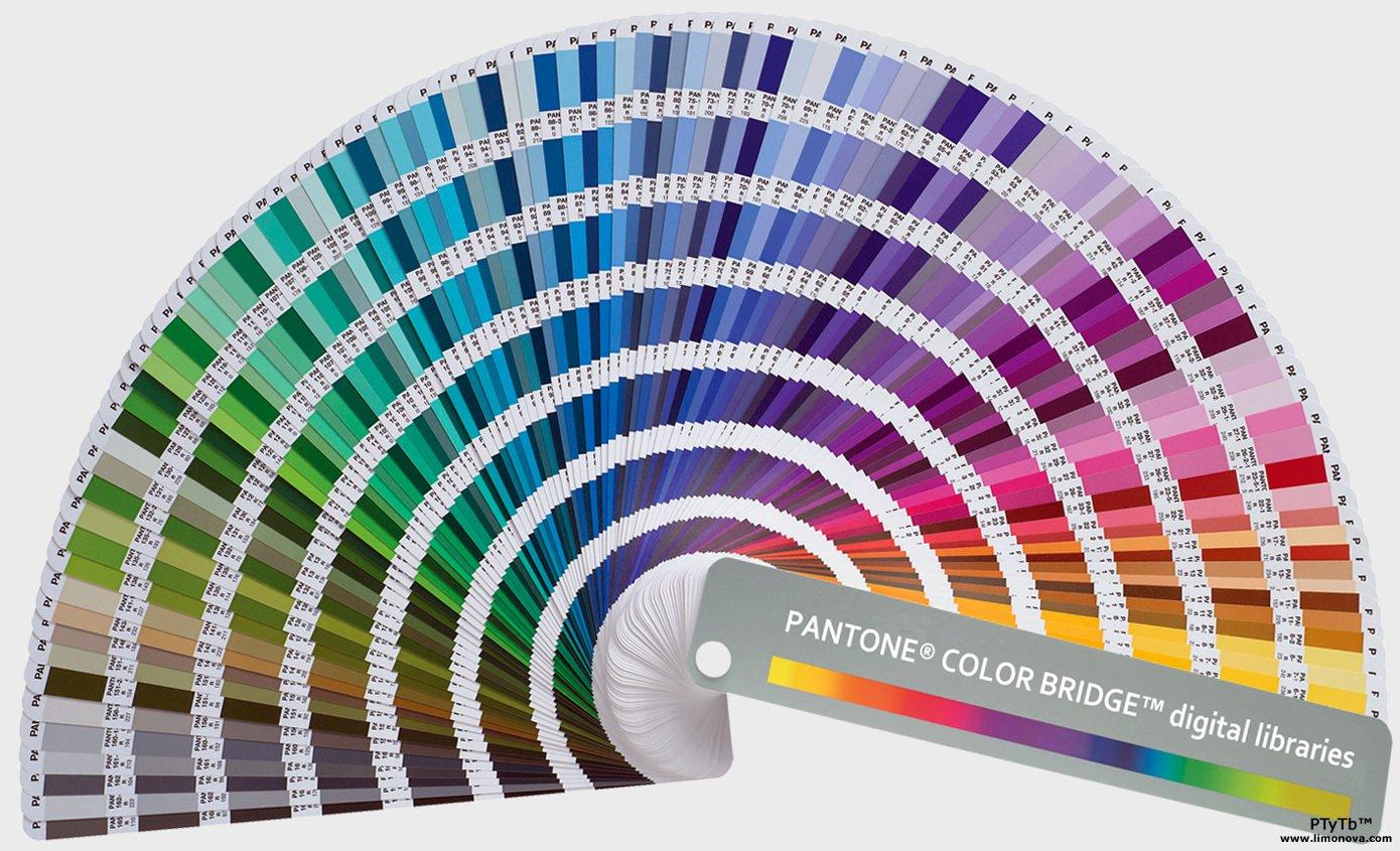 Pantone culori
