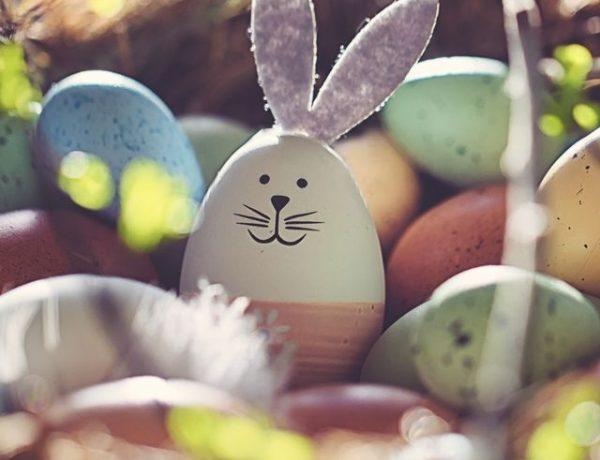 bunny-crafts-1612980748